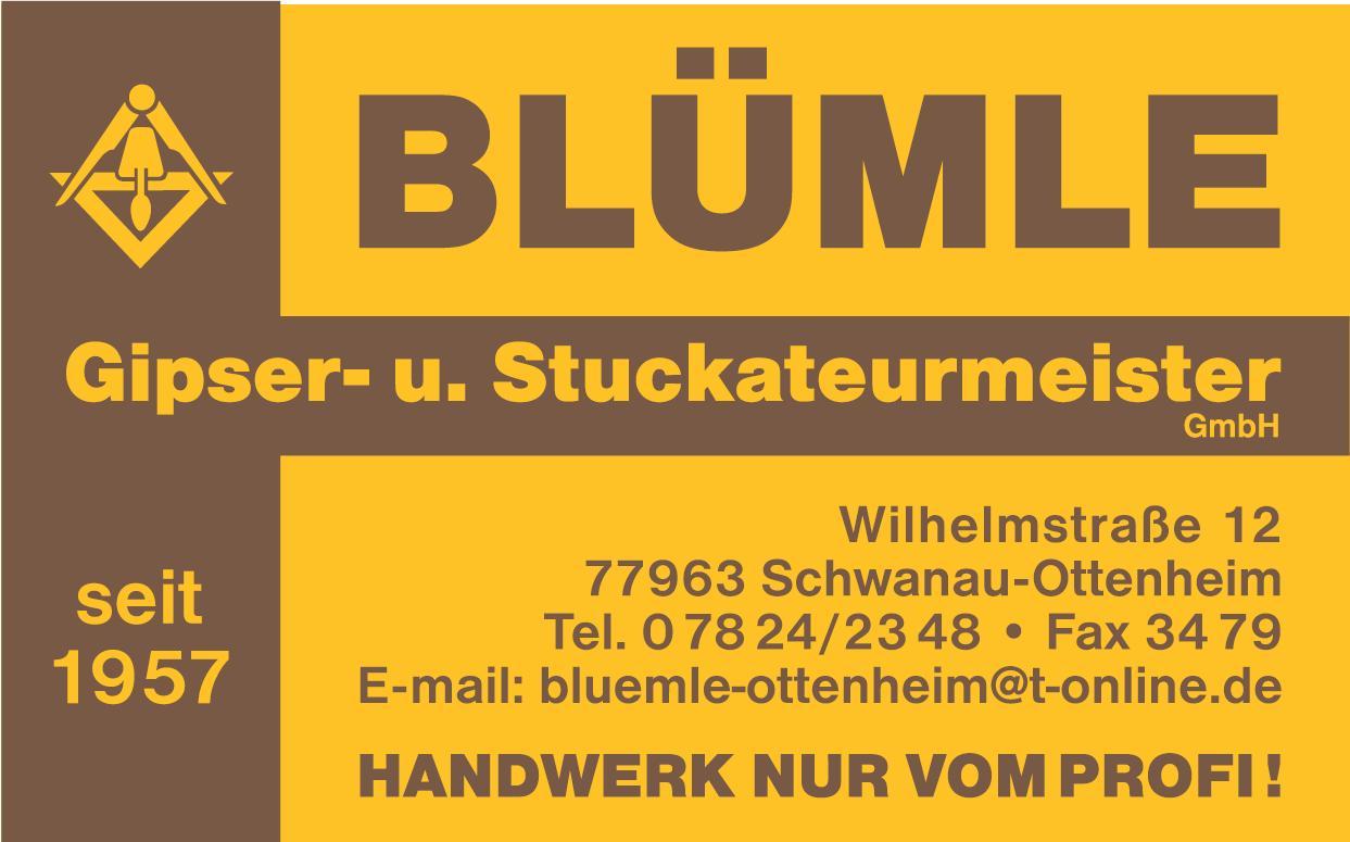 Blümle Gipser- und Stuckateurmeister